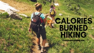 calories burned hiking