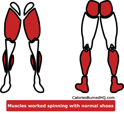 muscles worked spinning with normal shoes