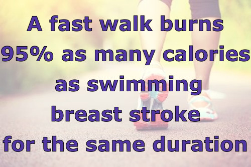 calories burned walking vs swimming